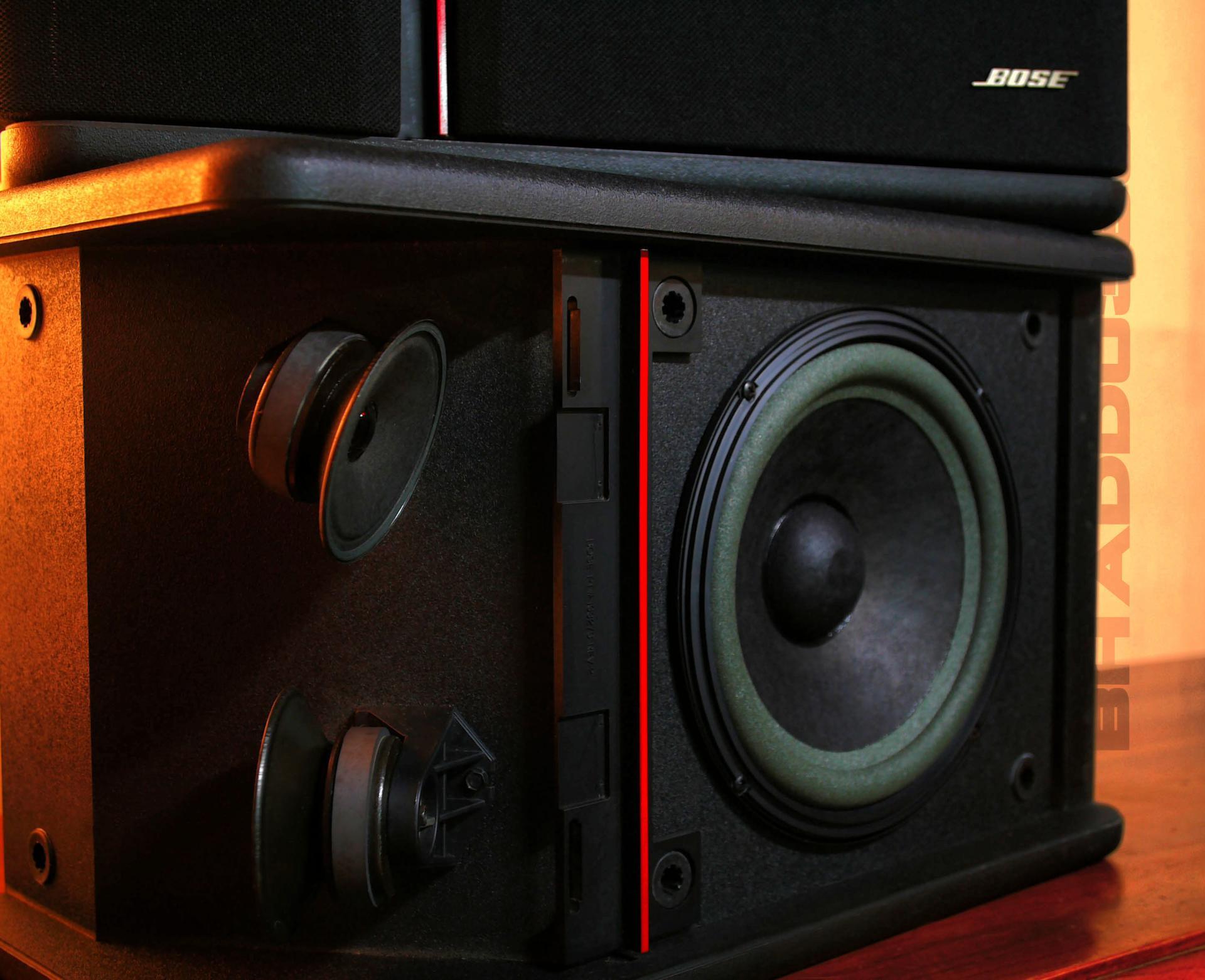 Bose 301 av monitor 02