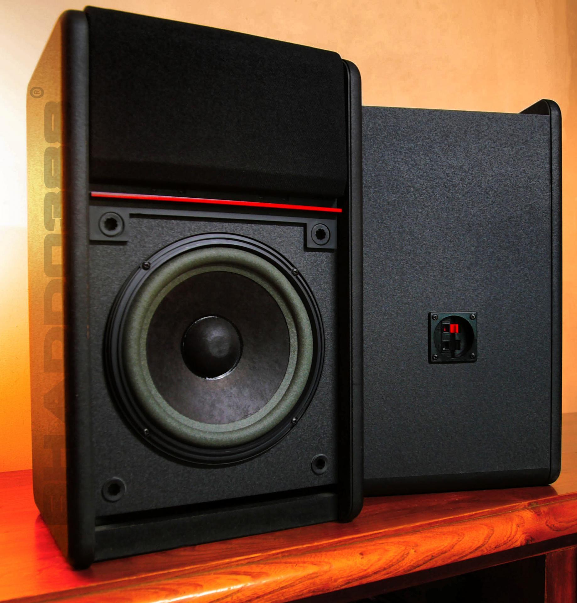 Bose 301 av monitor 03